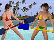 Play Beach Catfight